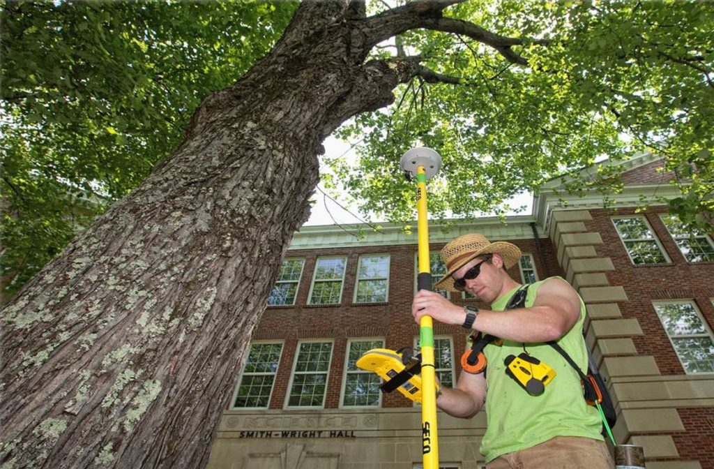 Arborist Consultations-Davenport FL Tree Trimming and Stump Grinding Services-We Offer Tree Trimming Services, Tree Removal, Tree Pruning, Tree Cutting, Residential and Commercial Tree Trimming Services, Storm Damage, Emergency Tree Removal, Land Clearing, Tree Companies, Tree Care Service, Stump Grinding, and we're the Best Tree Trimming Company Near You Guaranteed!