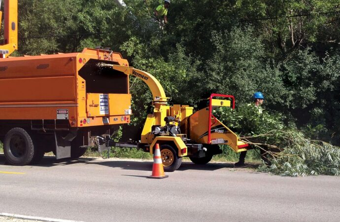 Commercial Tree Services-Davenport FL Tree Trimming and Stump Grinding Services-We Offer Tree Trimming Services, Tree Removal, Tree Pruning, Tree Cutting, Residential and Commercial Tree Trimming Services, Storm Damage, Emergency Tree Removal, Land Clearing, Tree Companies, Tree Care Service, Stump Grinding, and we're the Best Tree Trimming Company Near You Guaranteed!