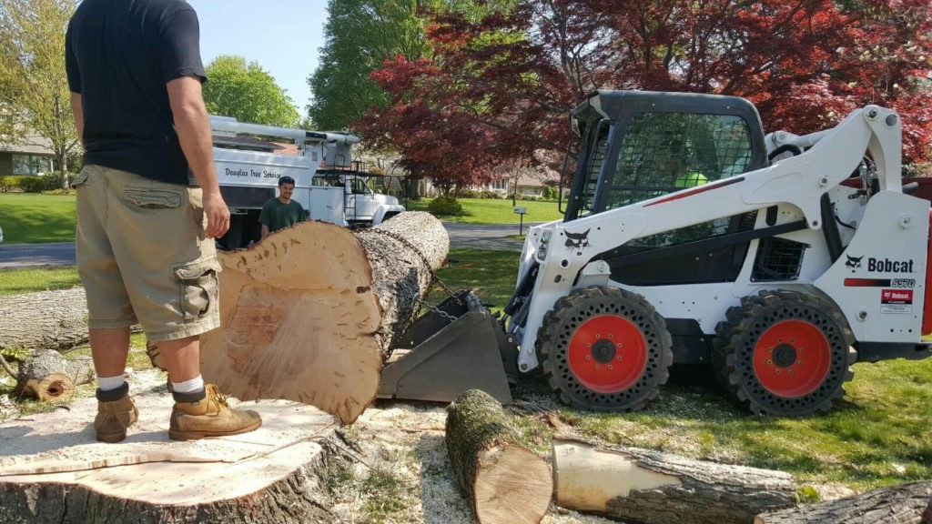 Services-Davenport FL Tree Trimming and Stump Grinding Services-We Offer Tree Trimming Services, Tree Removal, Tree Pruning, Tree Cutting, Residential and Commercial Tree Trimming Services, Storm Damage, Emergency Tree Removal, Land Clearing, Tree Companies, Tree Care Service, Stump Grinding, and we're the Best Tree Trimming Company Near You Guaranteed!