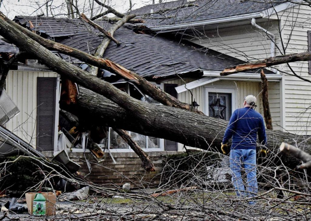 Storm Damage-Davenport FL Tree Trimming and Stump Grinding Services-We Offer Tree Trimming Services, Tree Removal, Tree Pruning, Tree Cutting, Residential and Commercial Tree Trimming Services, Storm Damage, Emergency Tree Removal, Land Clearing, Tree Companies, Tree Care Service, Stump Grinding, and we're the Best Tree Trimming Company Near You Guaranteed!